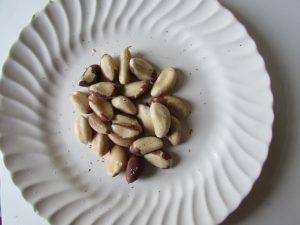 brazil-nut-1